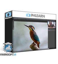 دانلود PhLearn Photoshop Basics (2017) Replacement Files