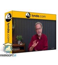 دانلود lynda Learning Catalog Design