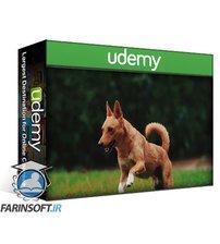 دانلود Udemy Dog Training: A Short Crash Course For Absolute Beginners