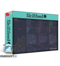 دانلود Skillshare Designing Data Visualizations: Getting Started with Processing