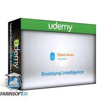دانلود Udemy Mini MBA in Emotional Intelligence & Resilience