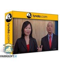 دانلود lynda Digital Strategy