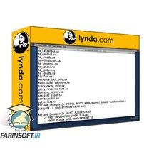 دانلود lynda Advanced MySQL and MariaDB