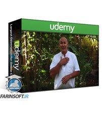 دانلود Udemy Learn Advanced Qigong to give you Instant Power & Strength