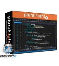 دانلود PluralSight ASP.NET Core and ASP.NET Input Validation