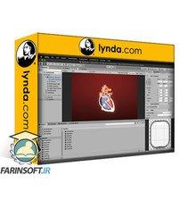 دانلود lynda Unity Medical Visualization: 02 Animation and Coding
