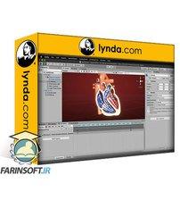 دانلود lynda Unity Medical Visualization: 03 Deployment and Usability