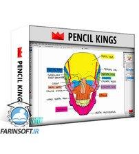 دانلود PencilKings Anatomy for Beginners – Figure Drawing From Head to Toe