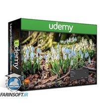 دانلود Udemy Affinity Photo: Beginner to Pro via Reference and Workflow