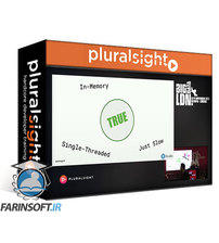 دانلود PluralSight You Love Big Data, so Does R