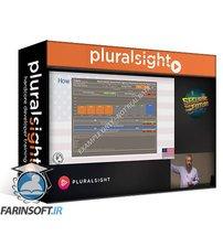 دانلود PluralSight How to Secure America
