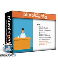 دانلود PluralSight IT Governance and Management: First Steps