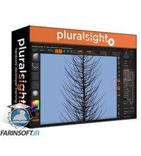 دانلود PluralSight Fiber Techniques in ZBrush