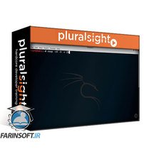 دانلود PluralSight Maximizing Nmap for Security Auditing