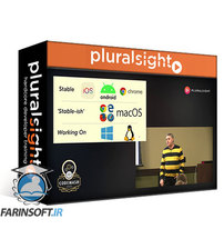 دانلود PluralSight One Codebase, Many Screens – Flutter in a Nutshell: CodeMash