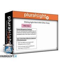 دانلود PluralSight Planning and Managing Enterprise-level Agile Transformations