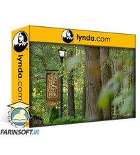 دانلود lynda Design Canada