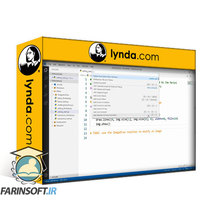 دانلود lynda Python Essential Libraries