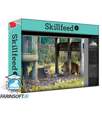 دانلود Skillshare Adobe Lightroom Classic The Complete Photo Editing Course From Import to Export