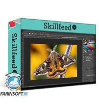 دانلود Skillshare Adobe Photoshop 2020: Advance masking techniques