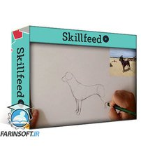 دانلود Skillshare Drawing Dogs: Basic Techniques to Improve Your Canine Illustrations