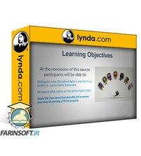 دانلود lynda Introduction to Disciplined Agile