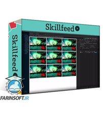 دانلود Skillshare Introduction To Web Image Performance