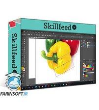 دانلود Skillshare Mastering Gradient Mesh: From Beginner to Photo Realistic Vector Art