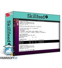 دانلود Skillshare Run a Web and DNS Server on Linux (Bind9, Apache2, PHP, MySql, WordPress)