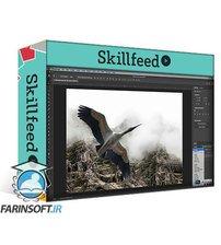 دانلود Skillshare Photoshop CC Essential Training Ultimate Beginners Course