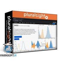 دانلود PluralSight Build Your First Data Visualization with NVD3