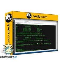 دانلود lynda Learning the Go Standard Library