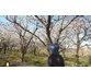 دانلود آموزش :نکات و ترفندهای مربوط به تولید ویدیوی گروه کاری یک نفره – به زبان فارسی
