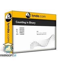 دانلود lynda Introduction to Network Routing