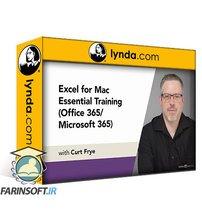 دانلود lynda Excel for Mac Essential Training (Office 365/Microsoft 365)