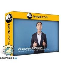 دانلود lynda Practical Privacy for Products and Services