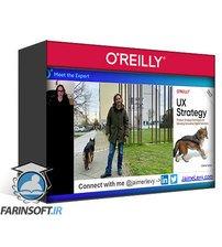 دانلود OReilly Meet the Expert Jaime Levy on UX Strategy