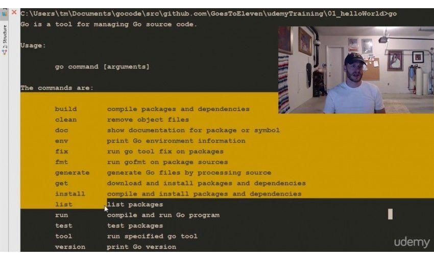 دانلود آموزش Udemy Learn How To Code: Google Go (golang) Programming