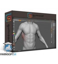 دانلود آموزش Gumroad Design and Anatomy Package