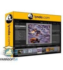 دانلود آموزش Lynda Learn Photo Management: Metadata