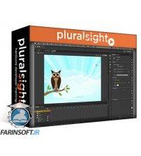 آموزش PluralSight Flash CC Fundamentals