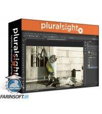 دانلود آموزش PluralSight Photographers Toolbox: Image Editing Tips