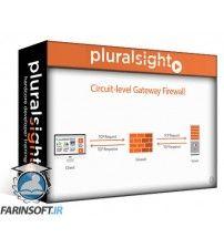 دانلود آموزش PluralSight Ethical Hacking: Evading IDS Firewalls and Honeypots