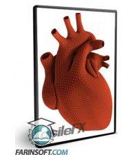 آموزش  Medical Modeling The Human Heart