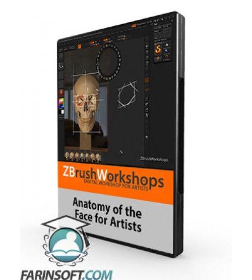 دانلود آموزش ZBrush Workshops Anatomy of the Face for Artists