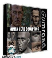 آموزش Gumroad Human Head Sculpting by Peter Zoppi