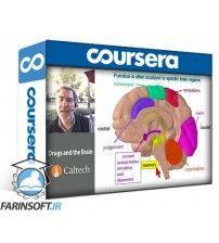 دانلود آموزش Coursera Drugs and the Brain