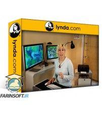 دانلود آموزش Lynda Home Techonomics