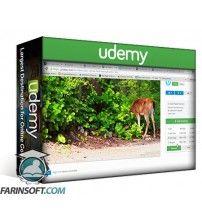 آموزش Udemy ROYALTY FREE STOCK FOOTAGE 8 Sources To Find Unlimited Videos For Personal and Commercial Projects