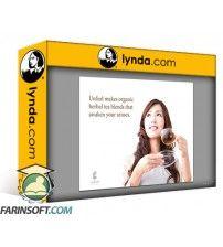 آموزش Lynda Learning Graphic Design: Layouts
